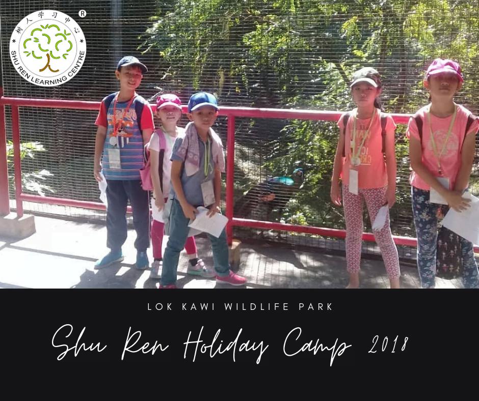 holidaycamp_lokkawi3