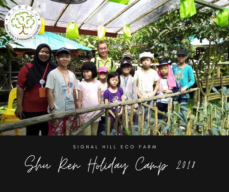 holidaycamp_signalhill2